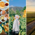 22 Top Things To Do In Perlis For Your Next Vacay 2